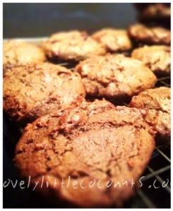 Choc chip cookies 2